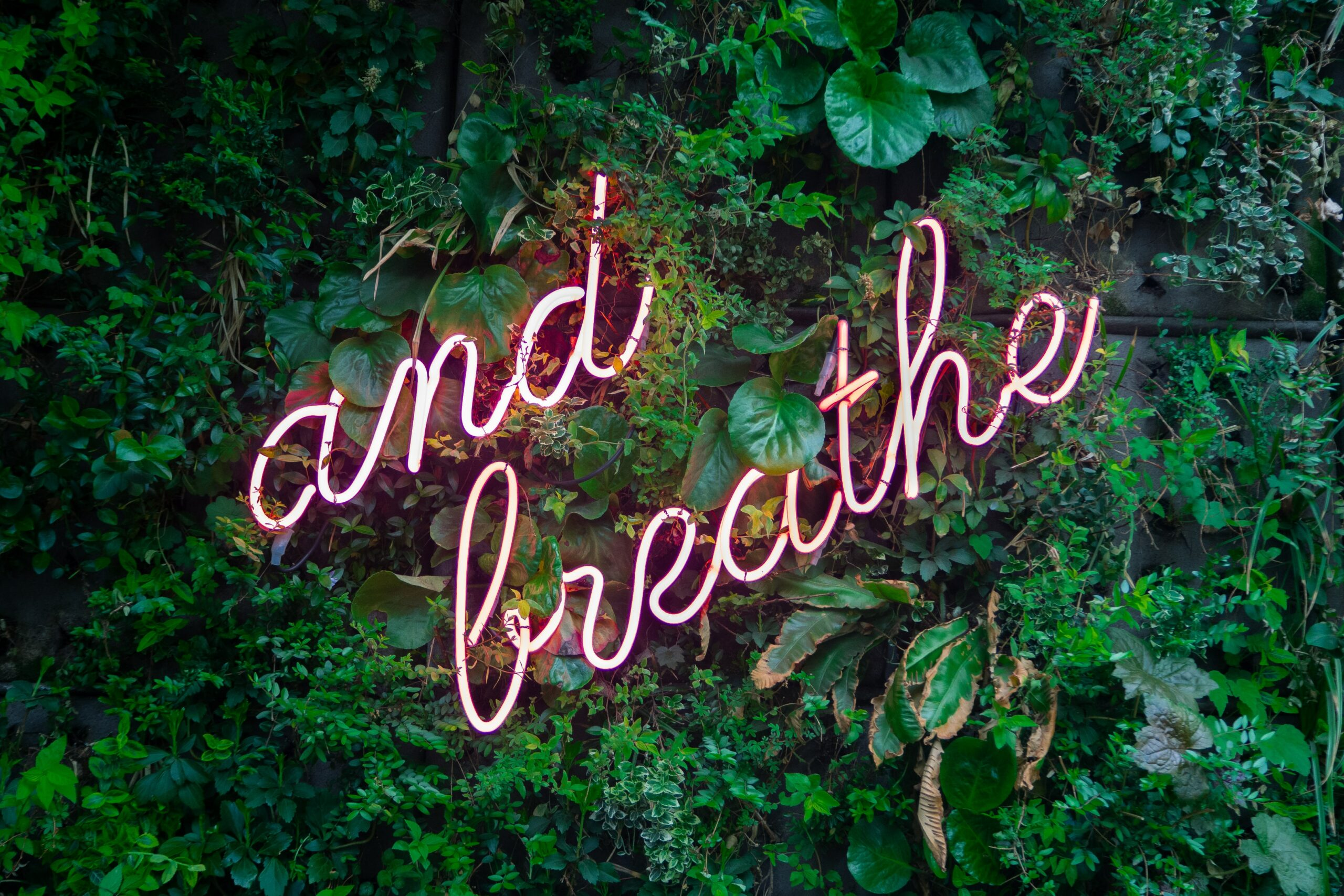 breathe text in green space